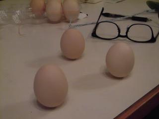 JAFAREC Workshop standing eggs