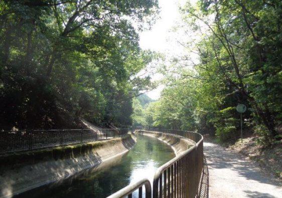 JAFAREC Yamashina river Kyoto